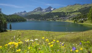 St. Moritz, St. Moritzersee