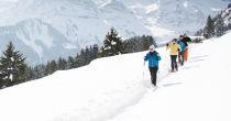 Snowshoeing Getaway