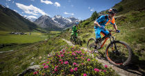 The Alps Trail Davos - Epic Trail