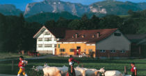 Appenzell - Relaxed and Friendly