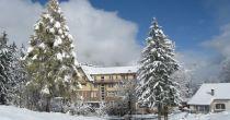 Snowshoeing Adventure Grimmialp
