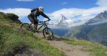 L'expérience unique du vélo
