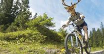 Una experiencia única en bicicleta