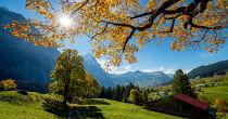 Herbst Special im Schweizerhof