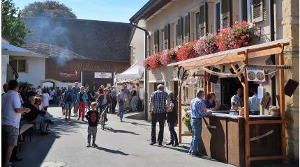 winzerfest im vully schweiz tourismus. Black Bedroom Furniture Sets. Home Design Ideas